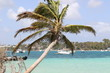 Guadeloupe - Fev 2016