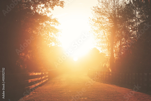 Fototapeta Rural country farm ranch grass road with three board wood fences under sunset or