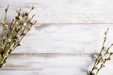 Gałązki wierzbowe na drewnianym stole
