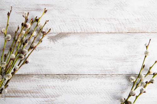 Obraz Gałązki wierzbowe na drewnianym stole - fototapety do salonu