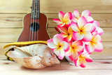 flower plumeria or frangipani bunch in white cup with sea conch
