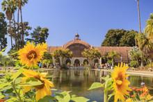 San Diego Balboa Park Botanical Building At San Diego