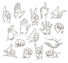 Vector Set Of Hands And Gestures - Outline Illustration