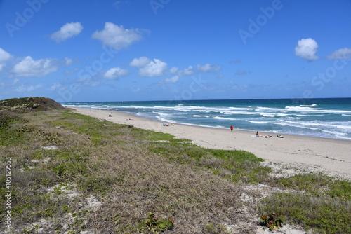 Beautiful pristine beach at  John D MacArthur State Park near West Palm Beach, Florida.