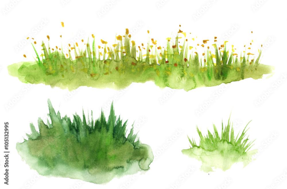 Fototapety, obrazy: Green grass hand drawn