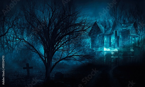 Fototapeta  scary house in mysterious horror forest