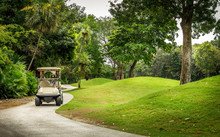 Golf Course And Golfcart