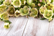Spring flowers decoration over wood pastel colors