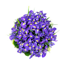 Bunch Of Irises, Bouquet, Isolated On The White, Top View