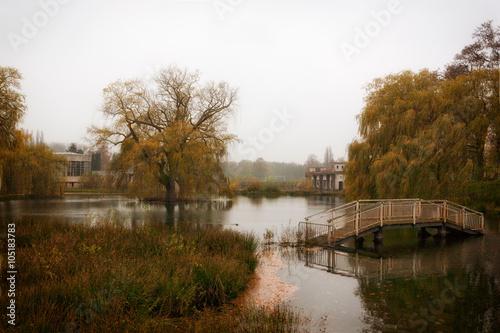 Fototapeten Natur Park in Hofstade-Heide Belgie bij een vervallen zwembad