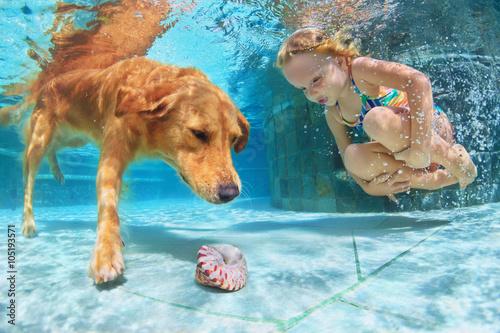 dziewczynka-i-golden-retriver-nurkujacy-po-muszelke-w-basenie