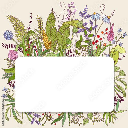 Photo  Botanical nature card