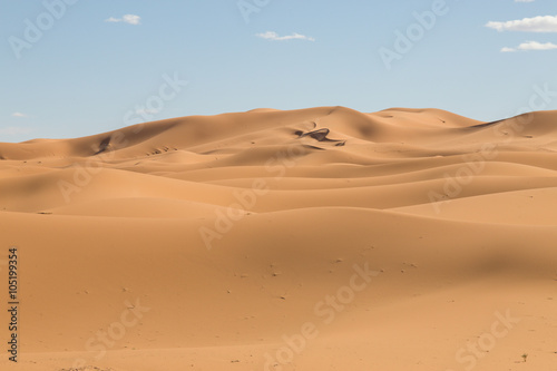 Deurstickers Droogte sand dunes in the desert in Merzouga
