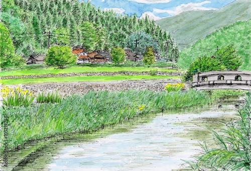 Fotobehang Olijf 初夏の風景