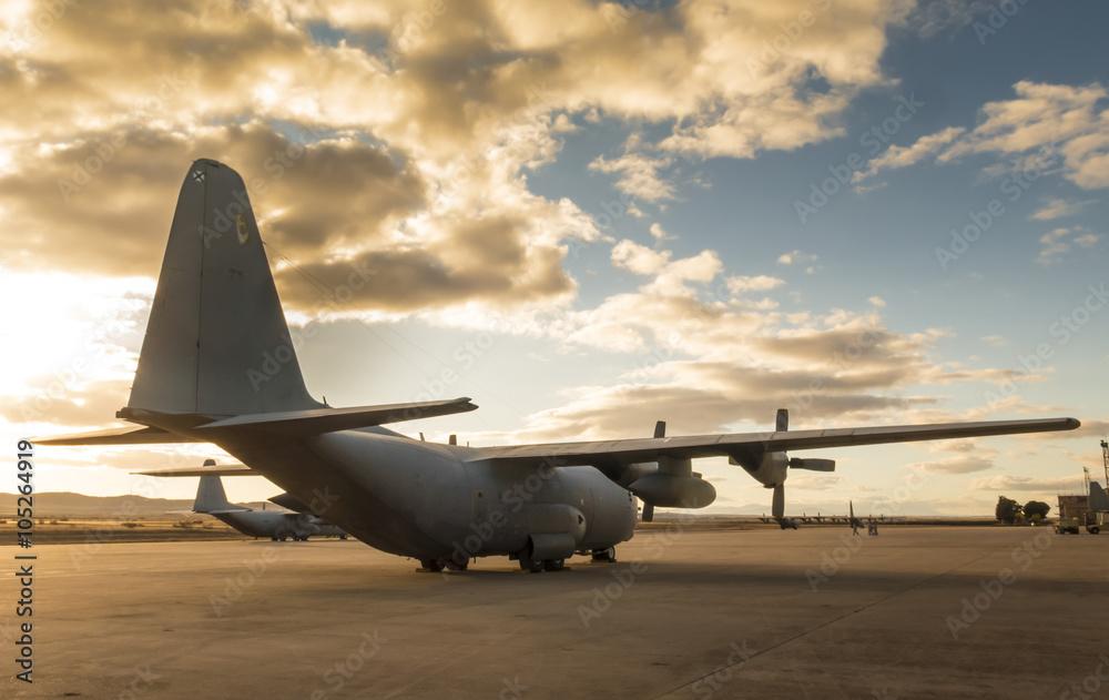 Fotografie, Obraz  Hercules aircraf on land
