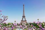 Fototapeta Wieża Eiffla - Eiffel Tower and Paris cityscape