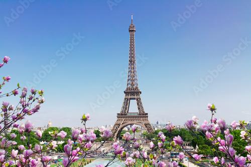 Poster Tour Eiffel Eiffel Tower and Paris cityscape