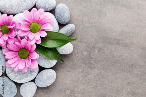 Photo sur Plexiglas Zen pierres a sable Spa stones and flowers on grey background.