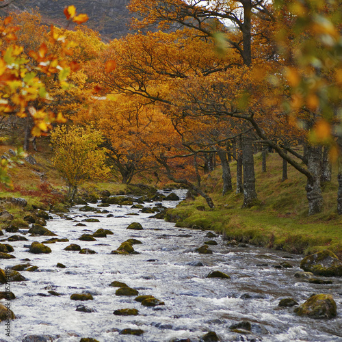 Fotografie, Obraz  Northern Derwent Water, Keswick and Blencathra. Little bridge in