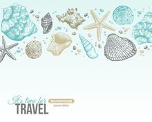 Summer Sea Shells Postcard Des...
