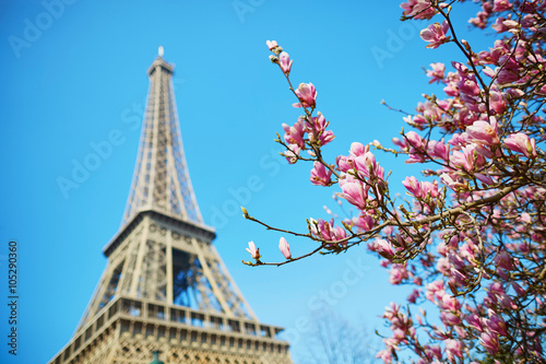 Spring in Paris Wallpaper Mural