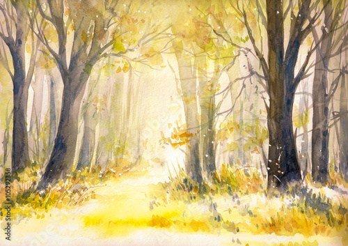 Poster Jaune Sunny summer forest.Picture created with watercolors.
