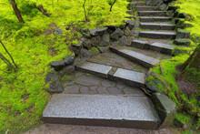 Granite Stone Steps Along Green Moss