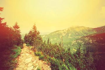 Panel Szklany Góry Colorfull retro mountains landscape