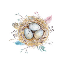Hand Drawn Watercolor Art Bird Nest With Eggs , Easter Design.