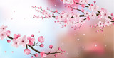 cherry blossom realistic vector, blur background