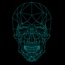 Blue Line Low Poly Skull