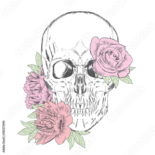 Poster Crâne aquarelle Hand-drawn skull. Skull and flowers. Vector illustration.
