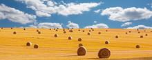 Erntezeit, Strohrollen, Getreidefeld