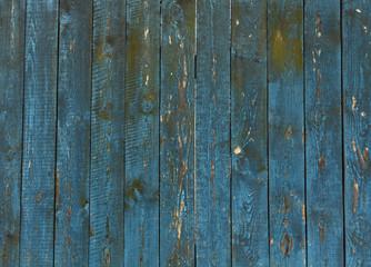 NaklejkaOld blue wooden fence texture.