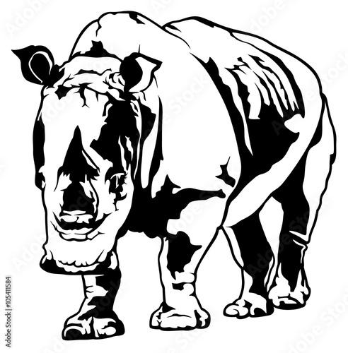 ilustracja-nosorozca
