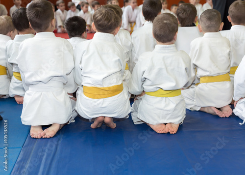 Garden Poster Martial arts Children in kimono sitting on tatami on martial arts seminar. Selective focus