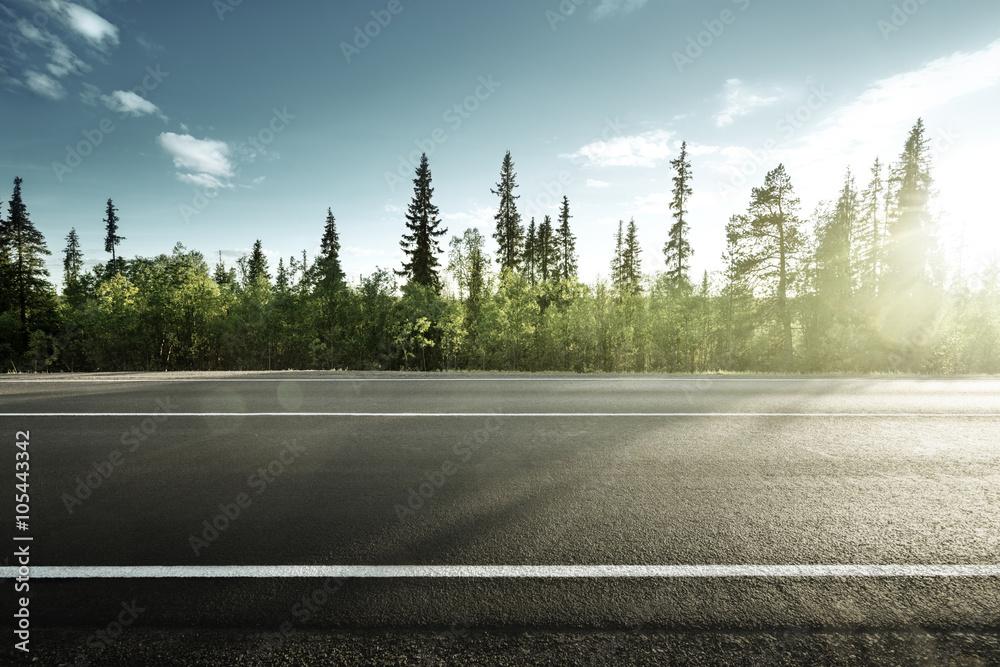 Fototapeta asphalt road in forest