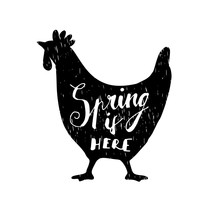Cute Easter Greeting Card With Hand Drawn Silhouette Of Hen And Hand Lettered Text, Vector