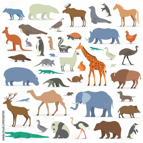 Big collection animals Canvas Print