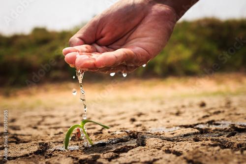 Fotografie, Obraz  Hand watering the ground barren