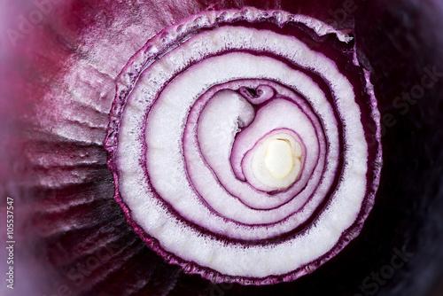 Cuadros en Lienzo  Red onion (background)