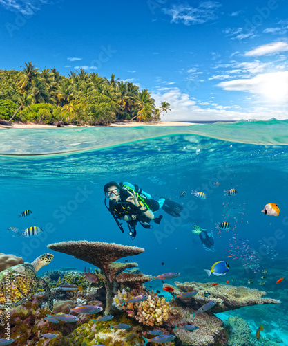 plakat Underwater coral reef with scuba divers