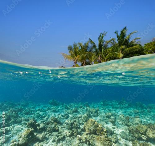 Fotografía  Underwater coral reef with tropical island
