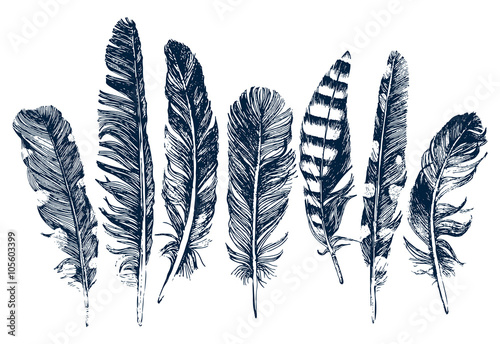 Valokuva Hand drawn feathers on white background