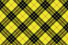 Macleod Tartan Kilt Fabric Tex...