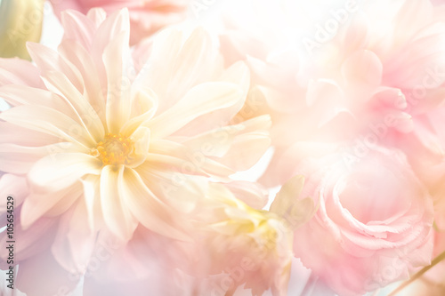 Foto-Schiebegardine ohne Schienensystem - Pink peony flower background (von lily)