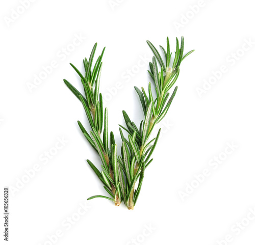 Fotografie, Obraz  rosemary isolated on white background