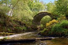 The Old Bridge Of Livet