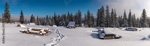 Fototapeta Rusinowa Polana zimą obraz
