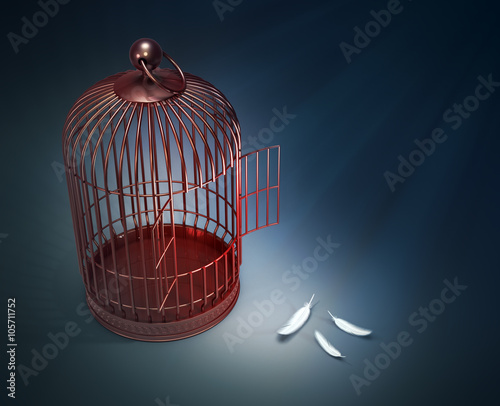 Fotografie, Obraz  An open bird cage with feathers - freedom concept illustration